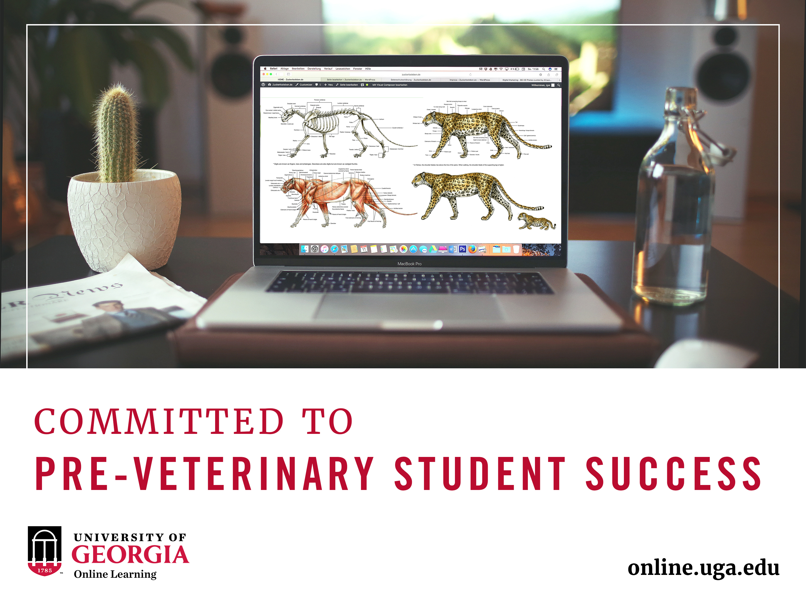 Uga Offers Only Online Pre Veterinary Anatomy Summer Course Uga